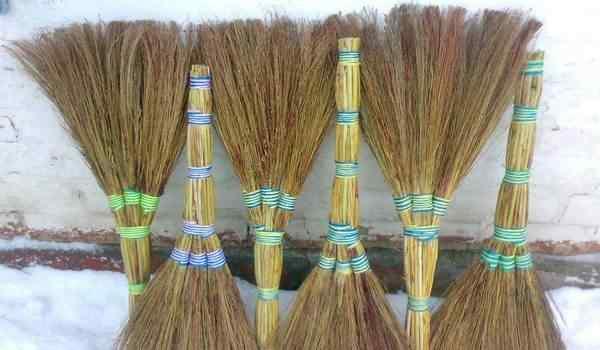 Broom conspiracy - houseguard