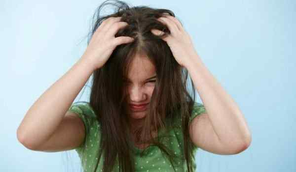 Dream Interpretation, what dreams of lice: in the head, in the hair, lice and nits in a dream