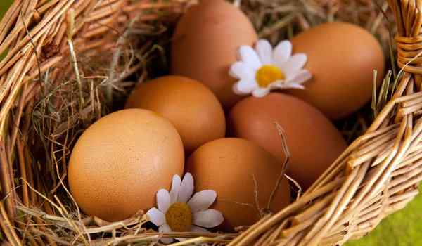Dream interpretation, what dream of eggs: chicken, raw, eggs in a dream to a woman