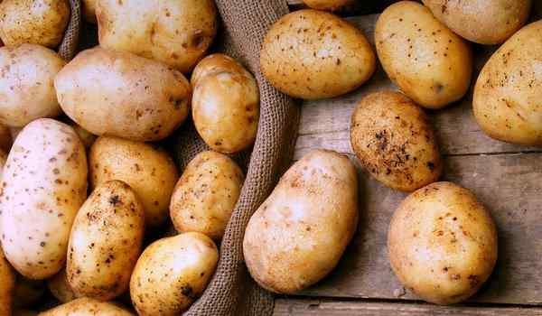 Dream interpretation, what dreams of potatoes: a woman, plant, dig potatoes in a dream