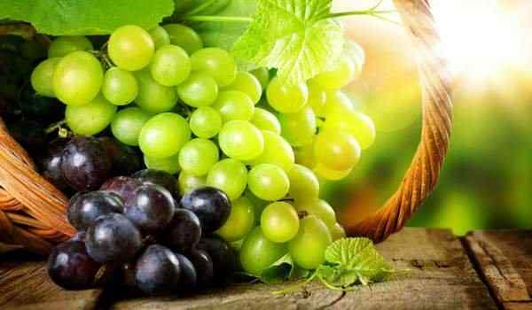 Dream interpretation, what dreams of grapes: large, green, eat grapes in a dream