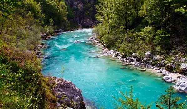 Dream interpretation, why dream of a river: dirty, clean, swim in a river in a dream