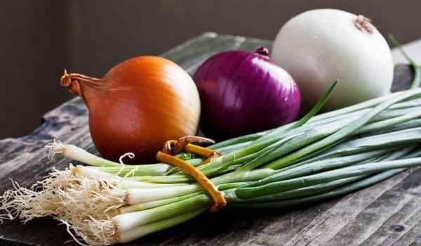 Why dream of onions: bulb, green, cut onions in a dream