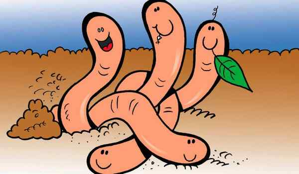 Много червей