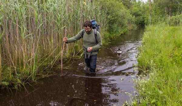 К чему снится болото грязное thumbnail